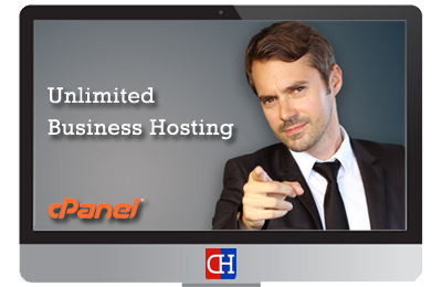 Unlimited Business Hosting